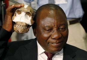 LAV-i asepresident Cyril Ramaphos võrdleb Homo naledi kolpa enda peaga.
