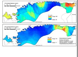(Joonis 5) Tsingi ja molübdeeni sisalduste levikumudel Eesti graptoliitargilliidis. Sisaldused on antud ppm-des ehk teisisõnu elemendi sisaldus grammides tonni kivimi kohta. Olemasolevate andmete alusel on metallide sisaldused kõrged just Eestimaa idaosas
