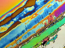 Žürii tunnustus: polüditsüaandiamiidi kiht enne elektropolümerisatsiooni. Pildil on kujutatud 200 mikromeetri laiust ala.