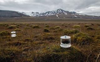 Žürii tunnustus üldkategoorias: inkubatsioonikambrid koos tsüanobakterite proovidega, et hinnata nende bakterite lämmastikku siduva ensüümi (nitrogenaasi) aktiivsust. Pilt on tehtud Teravmägedes, Sassendaleni piirkonnas.
