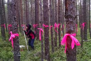 Ajakirja Imeline Teadus eripreemia: uurimisgrupp Jaapani Chiba ülikoolist koos Tallinna ülikooli ökoloogia keskuse inimestega koostamas metsa 3D-mudelit Hiiumaal Luidjal.