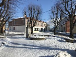 Sinimustvalge Eesti, Haapsalu