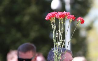 Victory Day is often symbolized by red carnations (picture is illustrative).