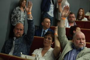 Выборы председателя Свободной партии.