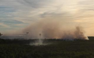 Пожар на полигоне Пала начался 25 мая.