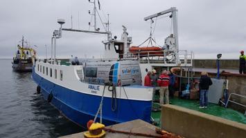 Паром Amalie вышел 3 июля в море.