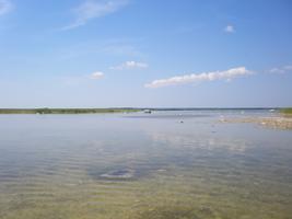 Teadlased uurisid teiste hulgas Hiiumaa ja Saaremaa rannikujärvi.