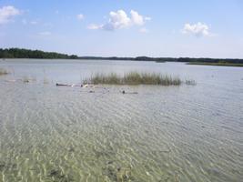 Saaremaa ja Hiiumaa rannajärvedes on vesi madal.