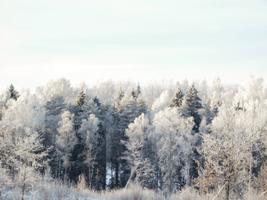 Külm ilm