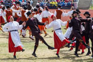 ERR-i tantsurühm ümbERRingi tantsupeol