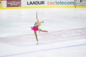 Eesti meistrivõistlused iluuisutamises
