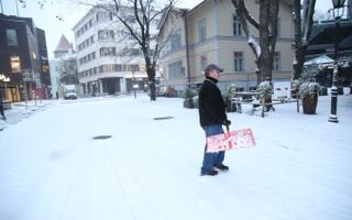 Veebruarikuine lumesadu Tallinnas.