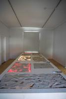 Ingrid Alliku näitus