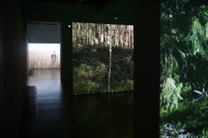 Выставка художницы Фло Казеару