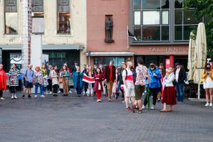 Hundreds of people gathered to form a human chain in Tallinn to support Belarusians.