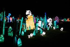 Фестиваль света
