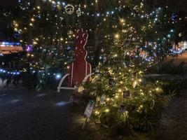 The third, smaller, cats-and-dogs Christmas tree, also in the town square.