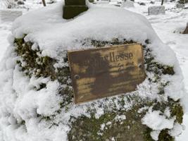 Rüüstamine Reopalu kalmistul Paides