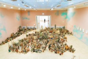 Выставка Фло Казеару