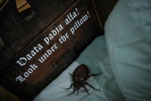 """Linnamuuseumi näituse """"Linnaloom. Lehm, lutikas ja lohe Tallinna ajaloos"""" avamine"""