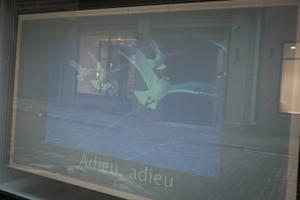 Screensaver #3: Ellen Vene 1. märtsi galeriis