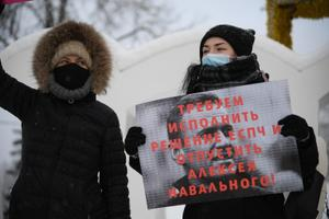 A protest was held on Sunday (January 31) to show support for jailed Russian opposition leader Alexei Navalny.