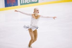 Iluuisutamise Eesti meistrivõistlused