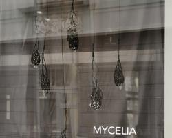 MYCELIA x QUIETIVO A-Galerii akendel