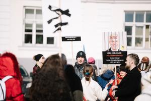 Meeleavaldajad Toompeal