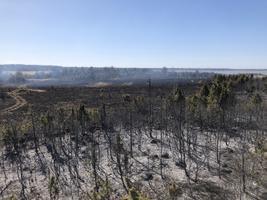 Tulekahju Tuuru külas.