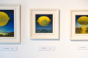 Kastellaanimaja galeriis avatakse näitus