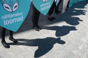 Пикет защитников животных на Тоомпеа.