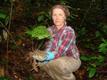 Taimeproovide kogumine Gaboni ekvatoriaalses vihmametsas.