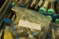 Uganda ekspeditsioonil kogutud mardikalised alles ootavad sorteerimist ja teaduslikku analüüsi.