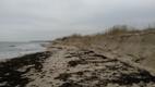 Peraküla rand pärast tormi.
