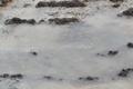 На Маарьямяги нашли могилы немецких солдат