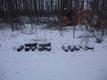 167 and a half artillery shells found buried in Pääsküla bog in Tallinn in late January 2018.