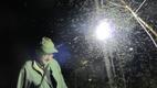 Žürii tunnustus: entomoloogia professor võtmas maha liblikate püüdmiseks kasutatud valguspüünist.