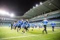 Eesti jalgpallikoondise trenn