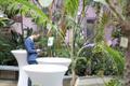 Isamaa volikogu Tallinna botaanikaaias