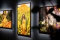 Kirsty Mitchelli näitus
