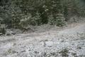 Esimene lumi HarjumaalLoksa teel