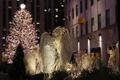 New Yorgis avati Rockefelleri kuusk