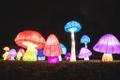 The Lantern Festival at Tallinn Song Festival grounds.