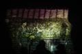 Vabaõhumuuseumi video- ja valgusetendus