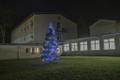 Foto autor: Sindi Gümnaasiumi koolihoone kõrval on ehitud väiksemat sorti elus kuusepuu, mis on küll linna suurest jõulupuust vähem silmatorkav, kuid siiski väga armas.