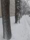 Lumine veebruari lõpp Tallinnas