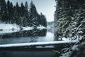 Lumi veebruaris Tikste ürgorus