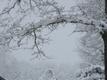 Lumi veebruari lõpus