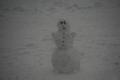 Lumi veebruari lõpus Õismäel Tallinnas